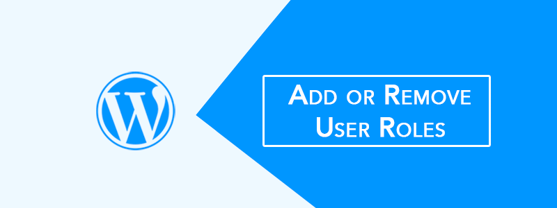 Add or Remove WordPress User Roles Without Plugin (Simple Code) 😈 image